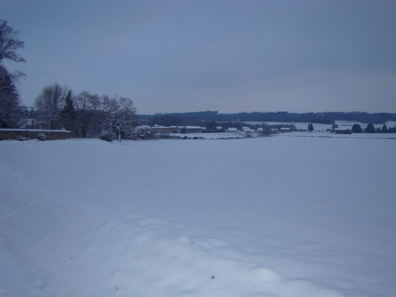Paars sous la neige