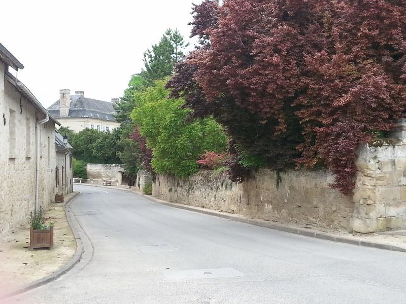 Rue Monseigneur Dauger et Château